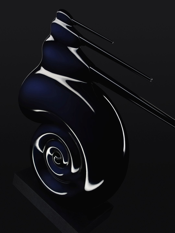 Nautilus resized.jpg