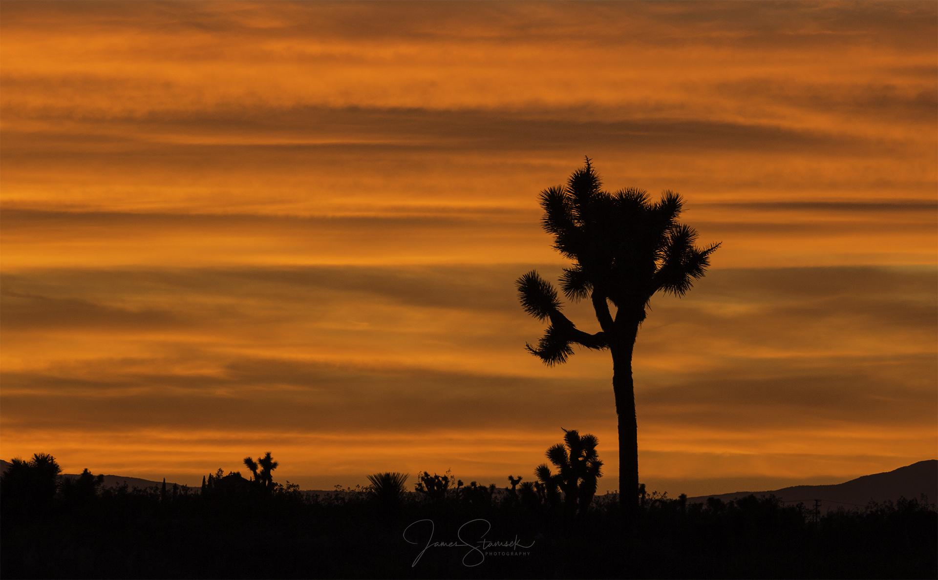 20180421_AV_Sunset2.jpg
