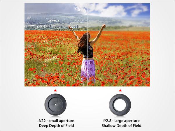 apertures-effect-on-depth-of-field.jpg