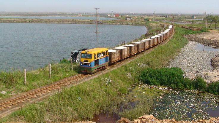 salt train.jpg