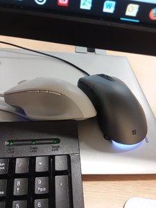 mice 1.jpg