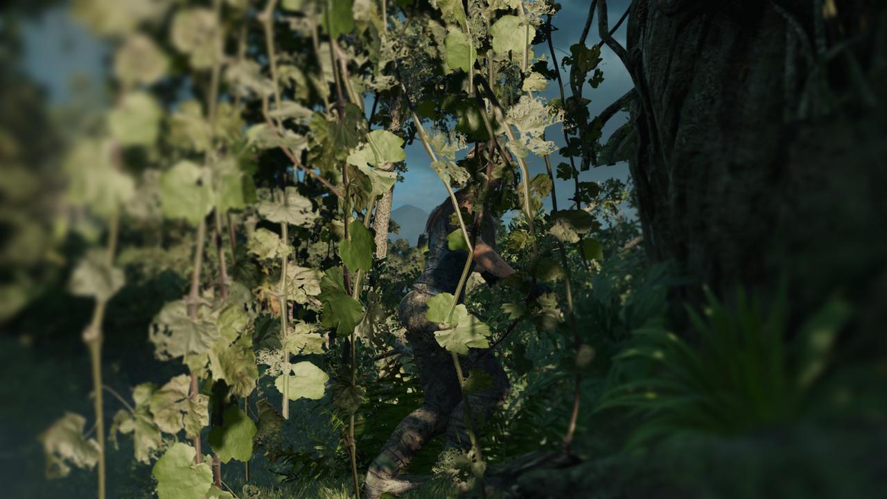 Shadow_of_the_Tomb_Raider_Screenshot_2018.09.18_-_15.24.45.76.jpg