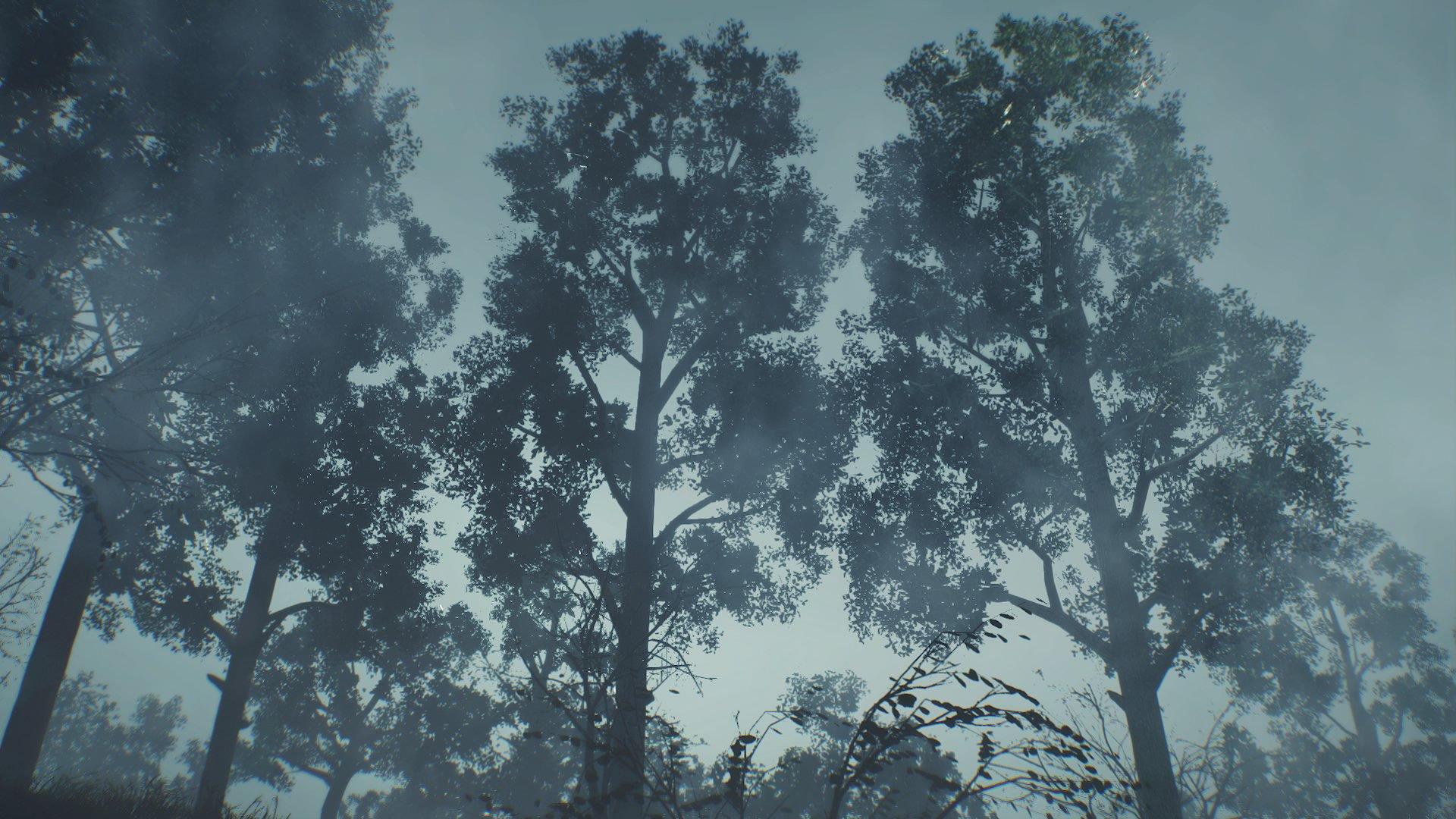 TEW trees 2.jpg
