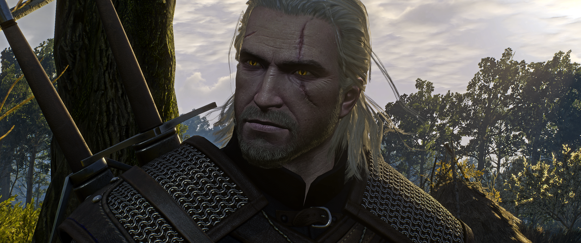 The Witcher 3 Screenshot 2019.01.02 - 20.33.49.16.png