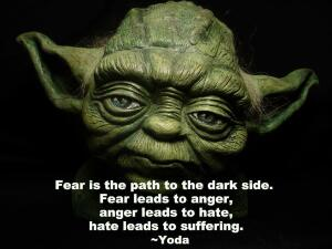 s-the-path-to-the-dark-side-fear-leads-to-anger-anger-leads-to-hate-hate-leads-to-suffering-yoda.jpg