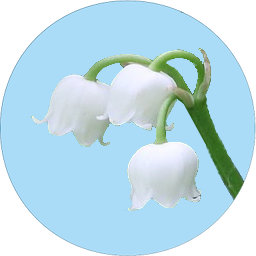 Badge_Lily_of_valley.png