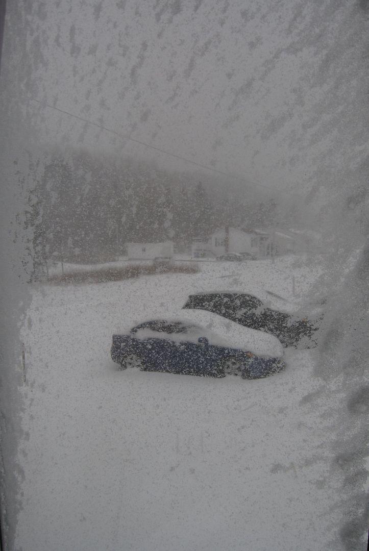 WinterSucks.jpg