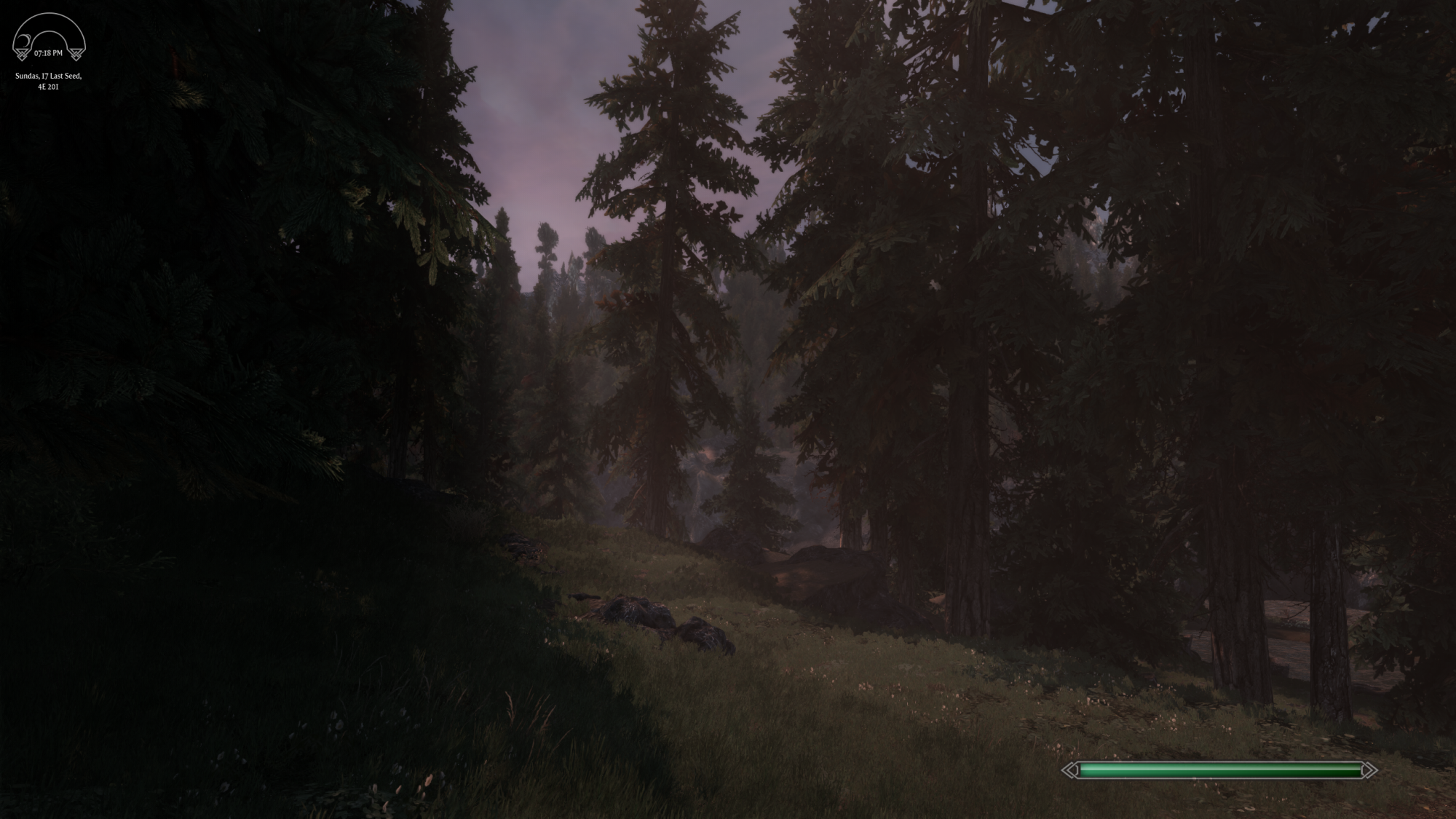 Solitude Forest.png
