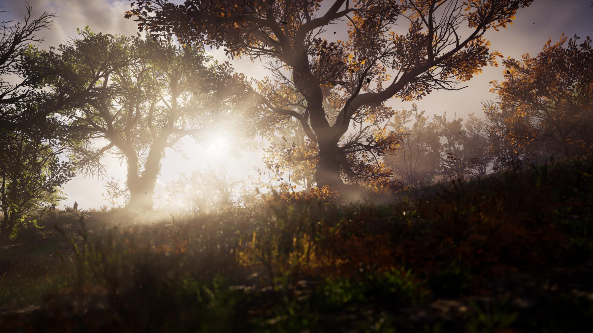 Assassin's Creed Valhalla Screenshot 2020.11.19 - 01.28.27.31.png