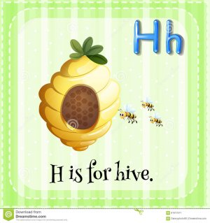 flashcard-letter-h-hive-illustration-61017517.jpg