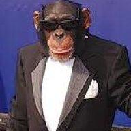 Monkey34